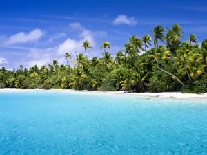 paraiso cook playas