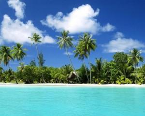 paraiso tropical polinesia
