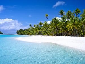 playas palmeras cook