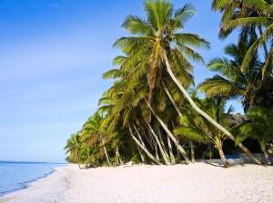 playas viajes cook