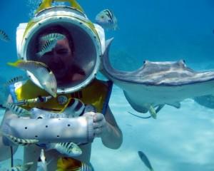 viajar a polinesia actividades acuaticas