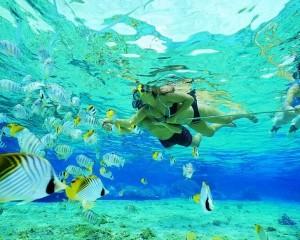 viajes a polinesia Snorkel