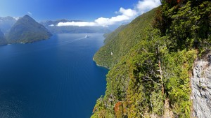 Cruise ship in Thompson Sound and Doubtful Sound, Fiordland Nati
