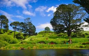 Nueva Zelandav descubre la comarca