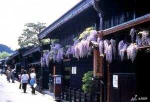 Viajar a Japon Kammi Sannomachi Takayama