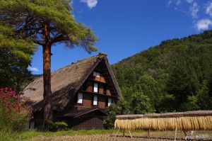 Viajes a Japon Shirakawa go Verano