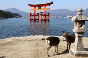 Viajes a Japon Torii Santuario Itsukushima Miyajima